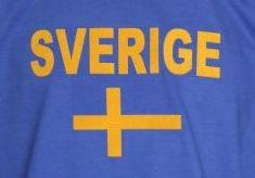 Schweden Hoodie N&F
