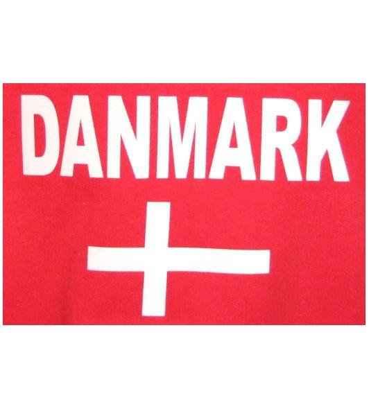 Dänemark Hoodie N&F