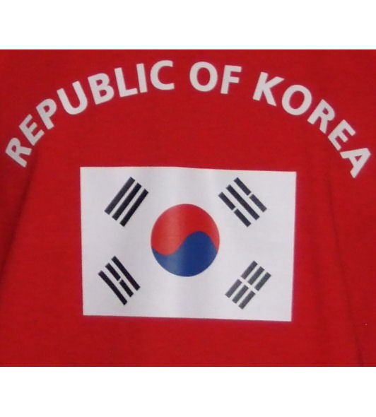 Südkorea Sweatshirt P