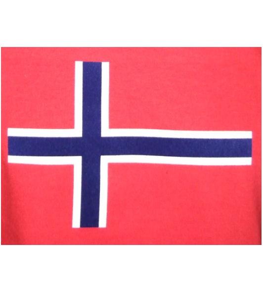 Norwegen Hoodie