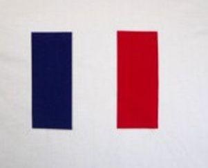 Frankreich Hoodie